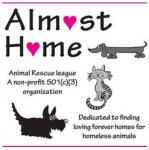 Almost Home Animal Rescue League & Haven